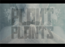 Plant Plants – Dust Me Down